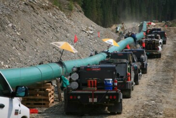 Trans Mountain pipeline approval ignored Indigenous rights, lawyers argue