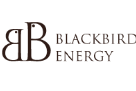 Blackbird Energy Inc. Announces Year End 2017 Reserves, Financial and Operating Results