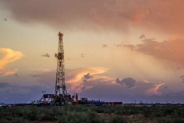 Oil steady as high U.S. output balances crude stock draw