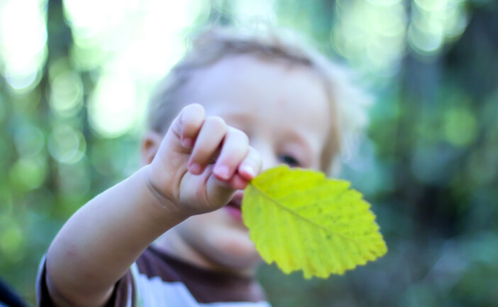 How to 'teach green': 4 ways you can help your kids to think sustainably