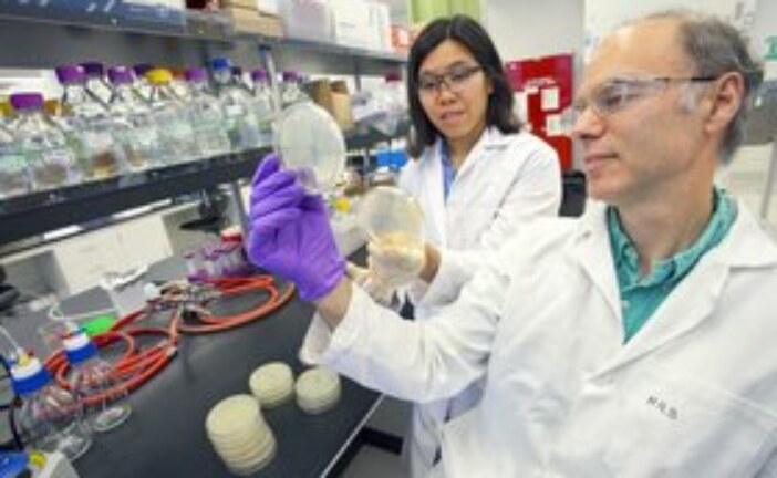 US DOE bolsters research into bioenergy