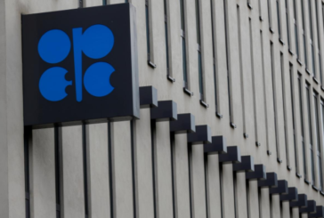 Oil steady as rally fizzles, OPEC-led cuts lend support