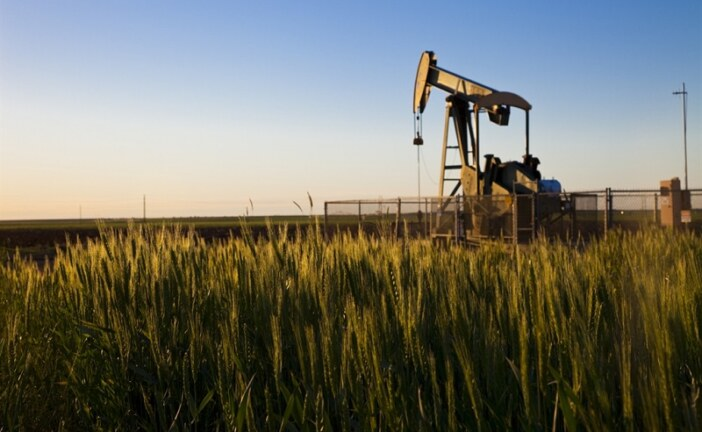 U.S. crude output to hit 12 million bpd in late 2019