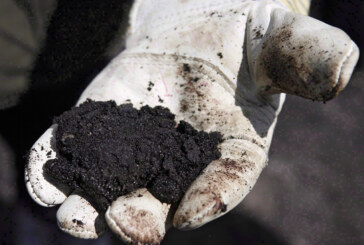 RBC floats oilsands royalty payment holiday to ease Canadian crude price pain