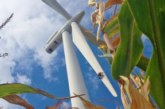 Reasons to celebrate Global Wind Day