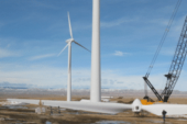 Diversifying Alberta's economy with wind energy will pay dividends says report