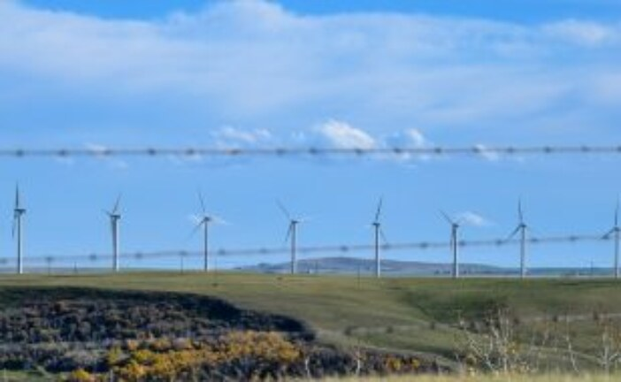 Protecting wildlife and their habitats the goal for Saskatchewan's new wind energy adaptive management guideline