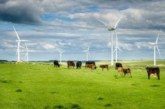 Wind farms and land use