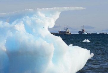 International ban on heavy fuel in Arctic shipping full of gaps: environmentalists