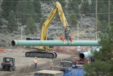 Energy regulator orders Trans Mountain to stop tree clearing work on project